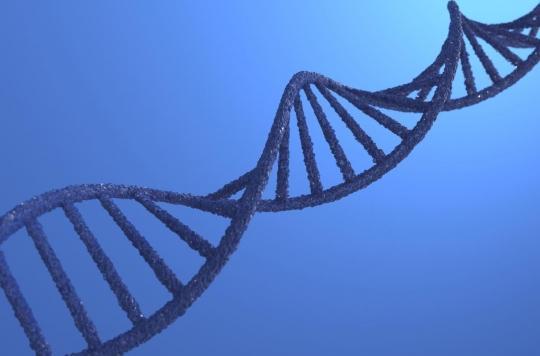 Covid-19 : 15% des formes graves seraient génétiques