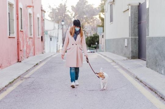 Monter les escaliers ou promener son chien pour vivre plus longtemps