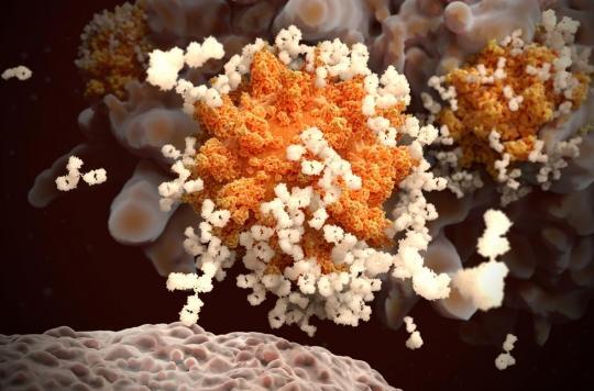 Pourquoi les formes sévères de virus attaquent les poumons