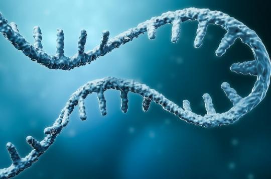 """ARN messager : un vaccin contre les cancers """"d'ici quelques années"""""""