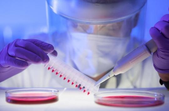 Les bactéries, une nouvelle arme pour lutter contre le cancer