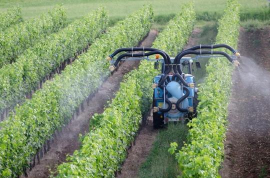 Pesticides : deux tumeurs cérébrales d'agriculteurs reconnues comme maladie professionnelle
