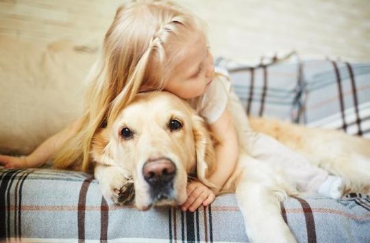 Les traitements anti-puces des animaux de compagnie sont dangereux pour le développement cérébral des enfants