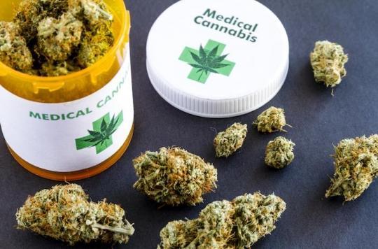 Le Comité éthique et cancer ne s'oppose pas au cannabis thérapeutique