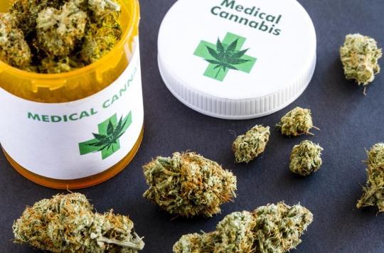 Cannabis thérapeutique : qui va fournir les 3 000 patients français ?