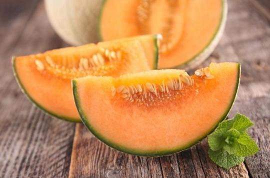 3 personnes meurent en Australie après avoir mangé des melons contaminés à la listeria