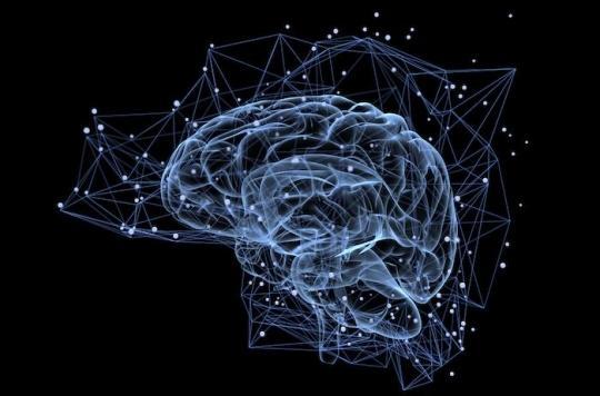 Obésité et perte de poids : comment aider le cerveau à combattre les hormones du stress ?