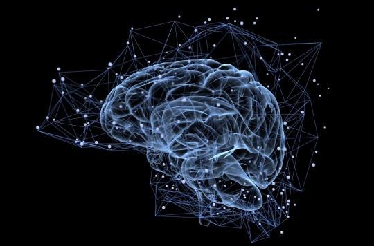 Le coronavirus est bien capable d'infecter les neurones de notre cerveau