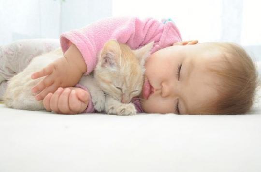 Allergies : les animaux de compagnie diminuent les risques de développer de l'asthme