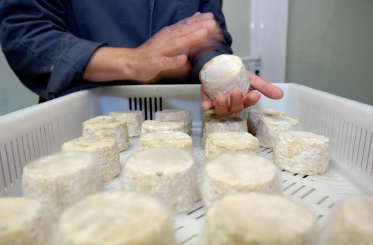 Risque de listériose: rappel de fromages Castérieu dans 6 départements