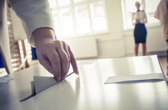 Le gouvernement promet le droit de vote \