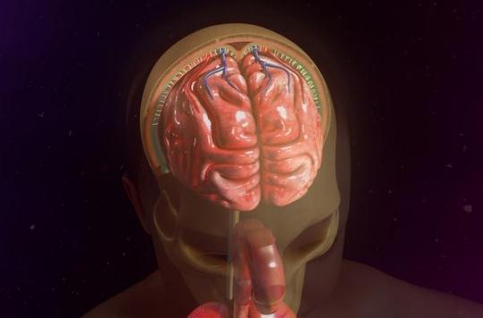 Méningite : pourquoi son diagnostic est-il souvent retardé ?