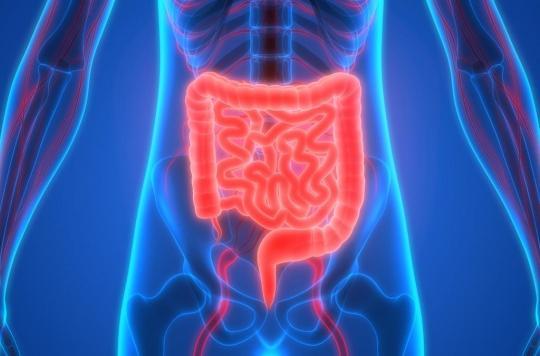 Comment le microbiote intestinal peut protéger des allergies alimentaires
