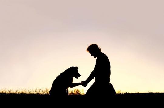 C'est prouvé, les chiens secourront leur maître en danger s'ils le peuvent