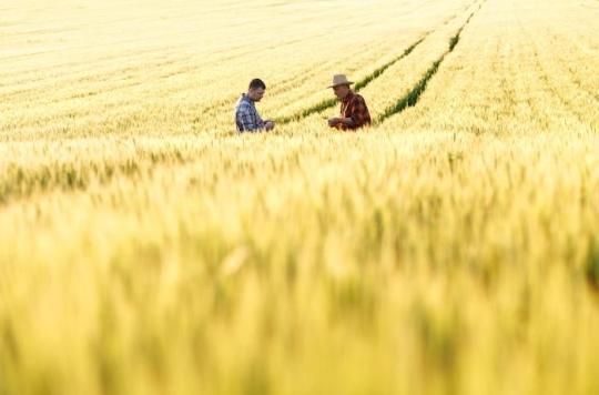 Maladie de Parkinson : les agriculteurs et les riverains plus exposés à cause des pesticides