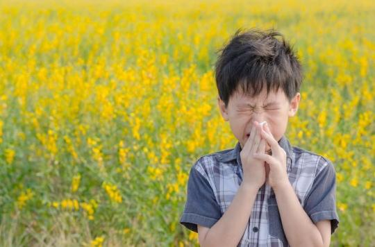 Allergies : la quasi-totalité de la France en alerte orange aux pollens de graminées
