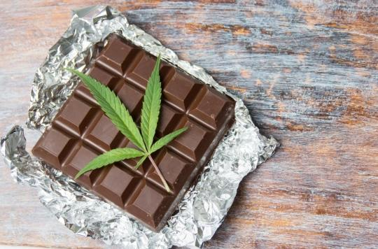 Bonbons au cannabis : les composés du chocolat pourraient brouiller les tests