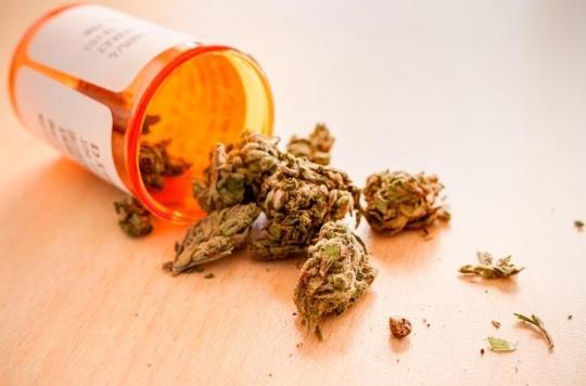 Cannabis thérapeutique: le comité d'experts de l'ANSM se dit favorable à sa légalisation