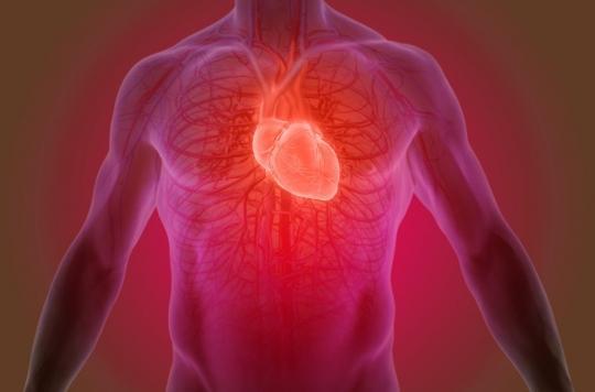 Prévention de la crise cardiaque : un nouveau médicament sans effets secondaires sur le risque hémorragique