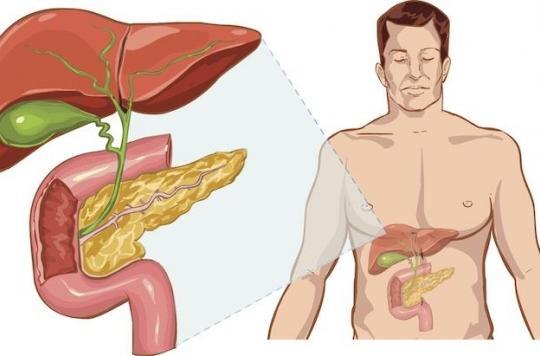 Alcool : un nouveau remède contre la cirrhose du foie