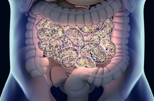 Des perturbations dans le microbiote en lien avec la dépression et l'humeur