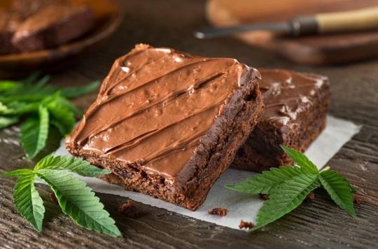 Cannabis médical : les séniors américains de plus en plus accros