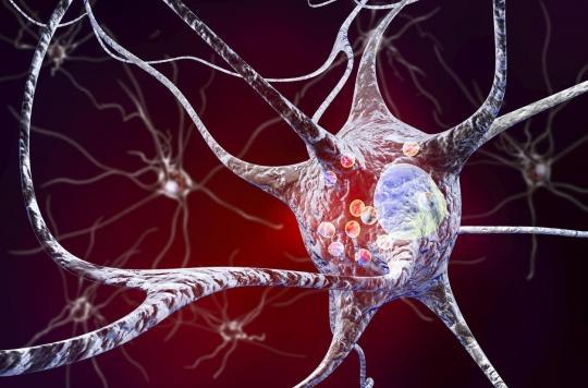 Parkinson: un médicament contre l'hypertrophie de la prostate réduirait le risque