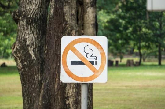 A Strasbourg, il sera bientôt interdit de fumer dans les parcs et espaces verts