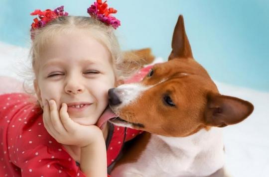Chien en tête, les animaux sont les  meilleurs amis de l'homme