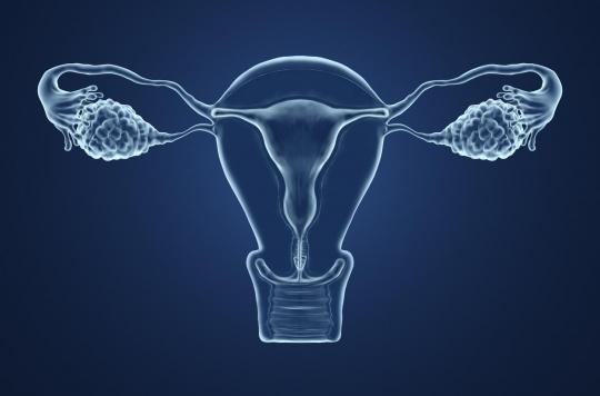 Procréation assistée et cancer : les risques pourraient être finalement liés aux causes de l'infertilité