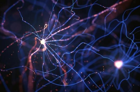 Schizophrénie, dépression : des pistes pour de nouveaux traitements