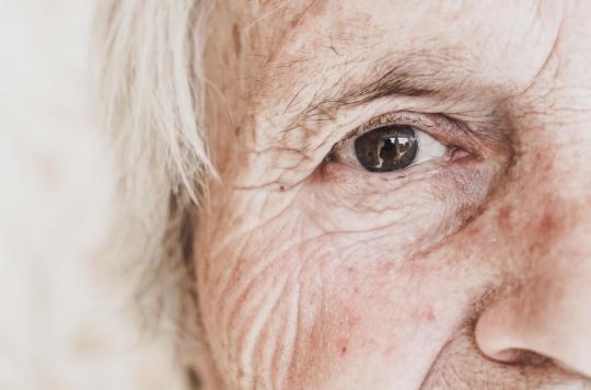 DMLA : un banc d'essai thérapeutique pour mieux comprendre l'évolution de la maladie