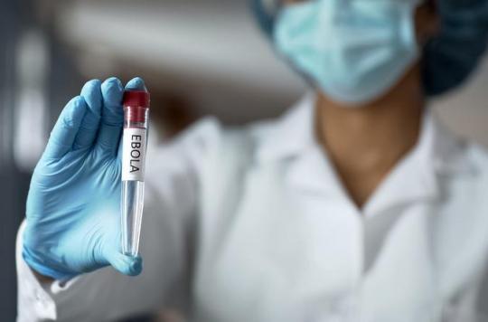 Ebola: une nouvelle étude identifie la façon dont le virus entre dans les cellules