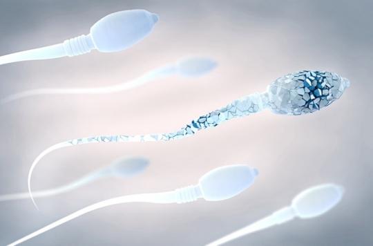 La baisse de la qualité du sperme