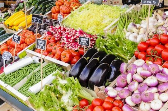 Nutrition : découvrez les fruits, légumes et fleurs comestibles de saison pour des plats riches en couleurs