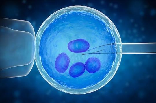Fécondation in vitro : plus de 8 millions d'enfants nés en 40 ans