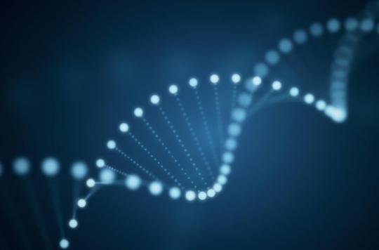 Un gène commun entre l'autisme et le syndrome Gilles de la Tourette
