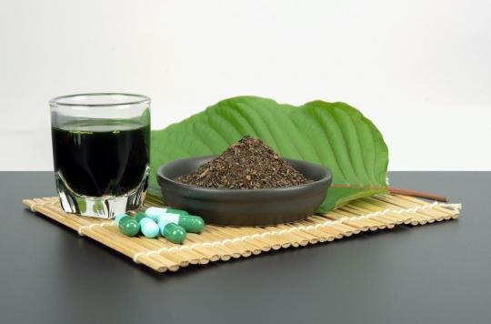 L'auto-médication au kratom peut se révéler dangereuse pour soigner l'alcoolisme