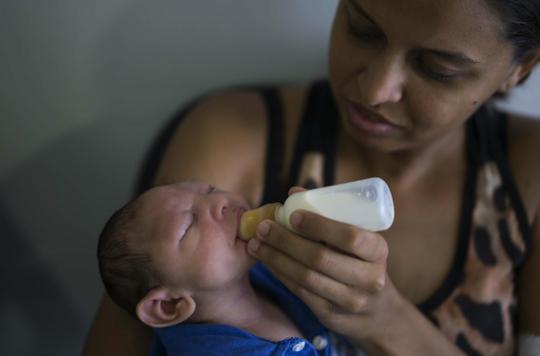 Microcéphalie : le virus Zika retrouvé dans le liquide amniotique