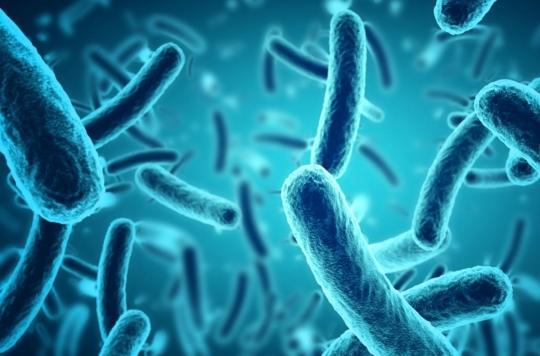 Un médicament anti-rhumatisme améliore l'efficacité des antibiotiques