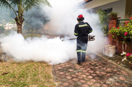 Paludisme : l'insecticide le plus puissant devient inefficace