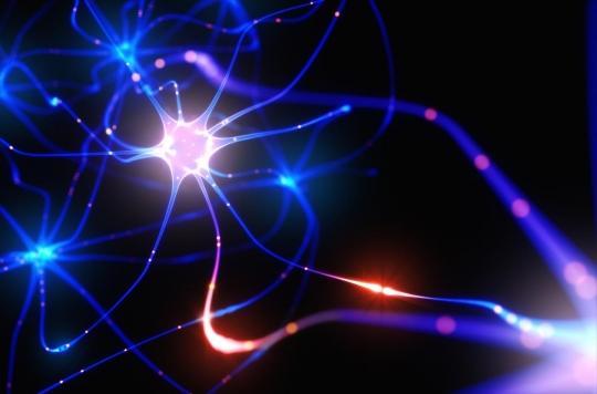 Cerveau : les neurones s'agitent pendant le sommeil
