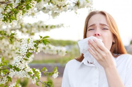 Allergie au pollen : des biomarqueurs permettent de prédire la gravité des symptômes