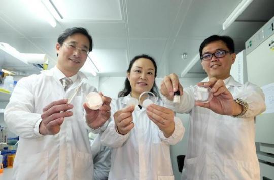 Plaies : un patch accélère la cicatrisation sans laisser de trace
