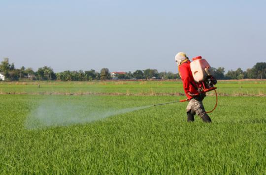 Une commune interdit les pesticides près des habitations