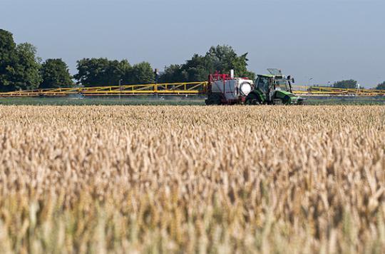 Pesticides agricoles : les riverains exposés aux perturbateurs endocriniens