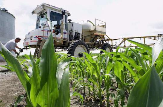 Ségolène Royal souhaite l'interdiction de certains herbicides