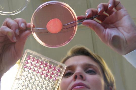 L'Oréal fait imprimer des tissus humains pour tester ses produits