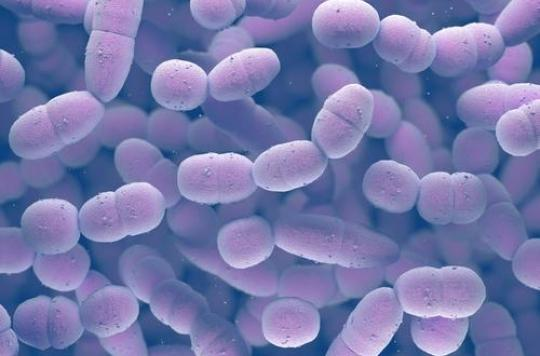 La pneumonie plus mortelle que le SIDA, le paludisme et la rougeole réunis