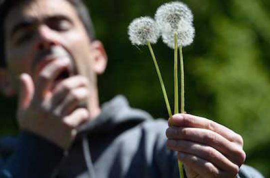 Allergies : alerte aux pollens sur presque toute la France